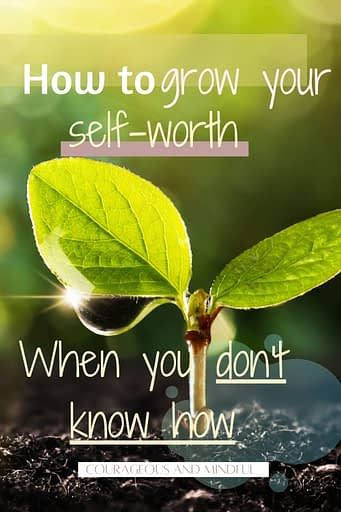 how-to-grow-your-self-worth-when-you-don't-know-how